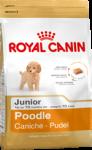 Poodle Junior (Пудель)