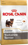 Yorkshire Terrier Junior (Йоркширский терьер)