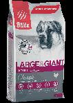 Blitz Adult Largey & Giant Breeds